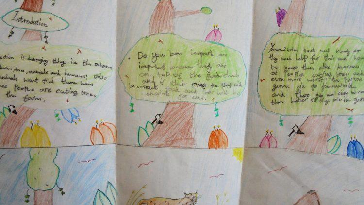 Persuasive writing in 5 Birch