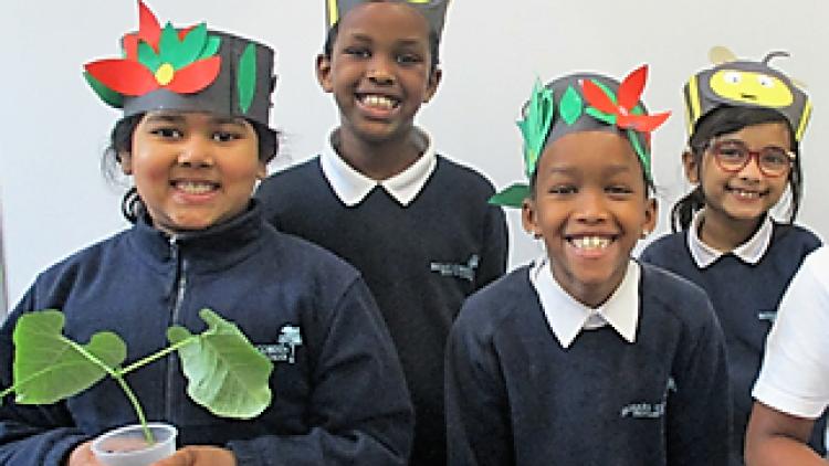 3 Rowan's 'Plants' assembly