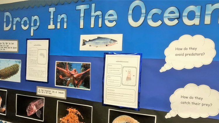 Geography in Year 4