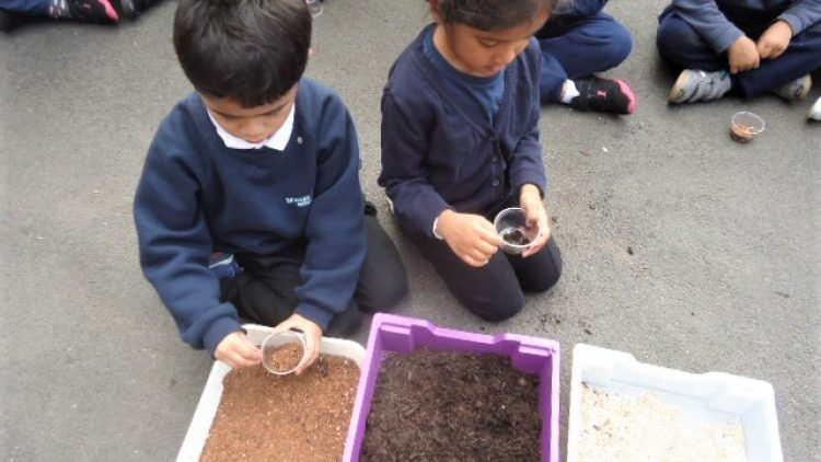 Gardening with seeds – Reception