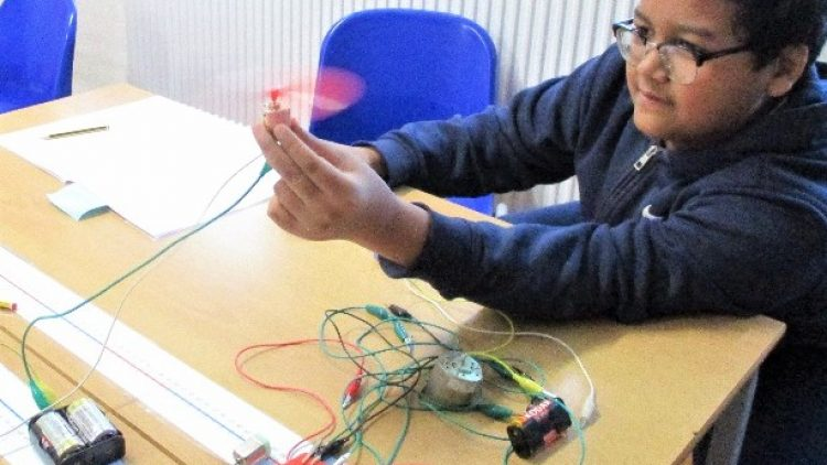 Devising science investigations  – Year 6