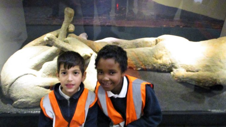 National History Museum –  Year 3